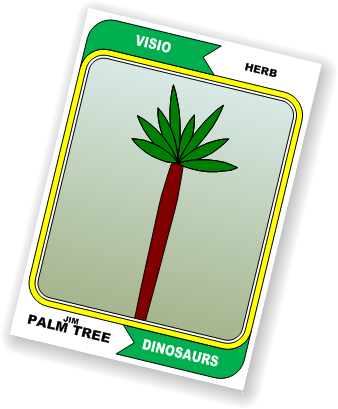 jim-palm-tree